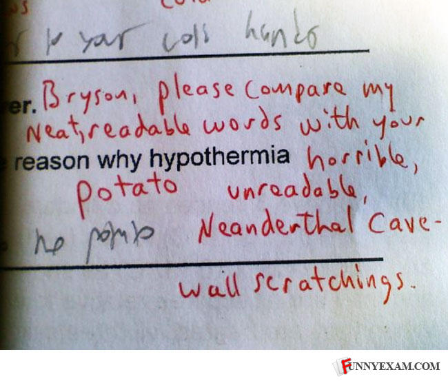 Funny Essay Answers