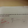 6736 - Funny Exams