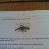 49109 - Funny Exams