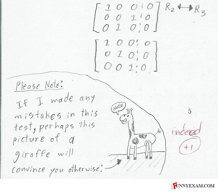 - that giraffe's got no ears! That teacher is too ge