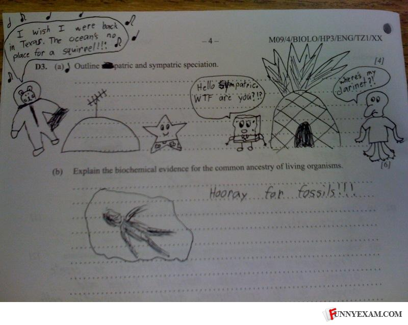 funny exam answers. Funny Exams